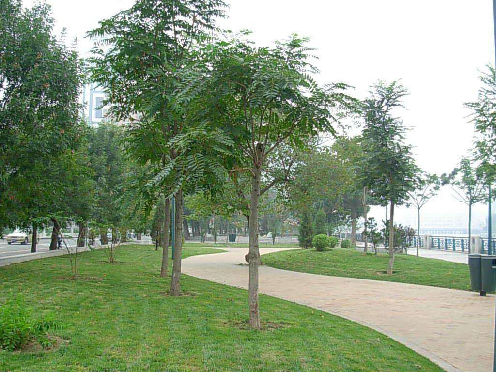 园林绿化万博manbetx手机版苹果下载